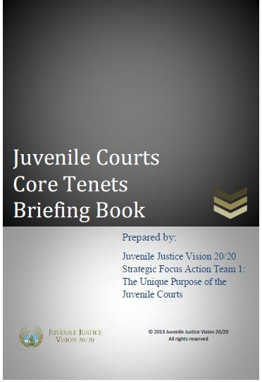 Juvenile Courts Core Tenets Briefing Book